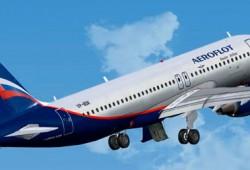 Москва Сочи авиабилеты цена прямые рейсы дешево